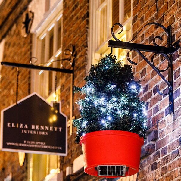 Plantscape's solar power Christmas tree