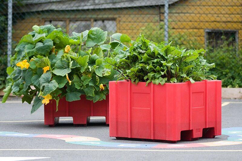 Plantscape educational planters