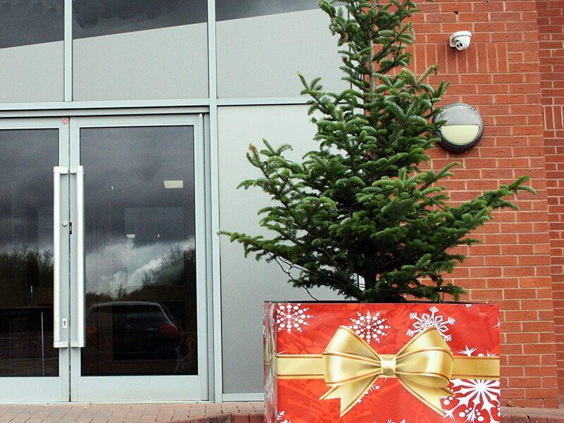 Plantscape festive Christmas tree surround