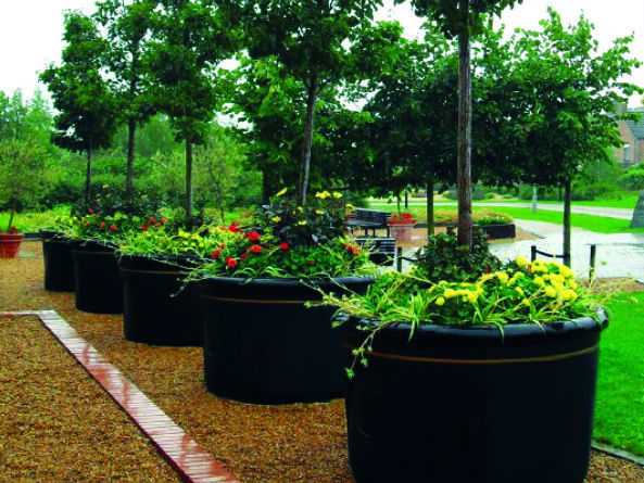 plantscape_tree_planter_image